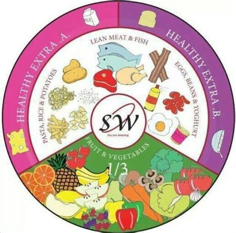 diet plate template 17 best ideas about portion plate on