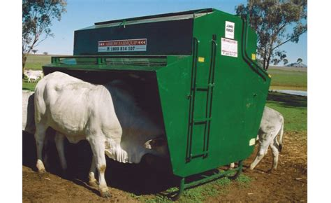 Cattle Grain Feeders cattle feeders cattle farming equipment commander aq quip