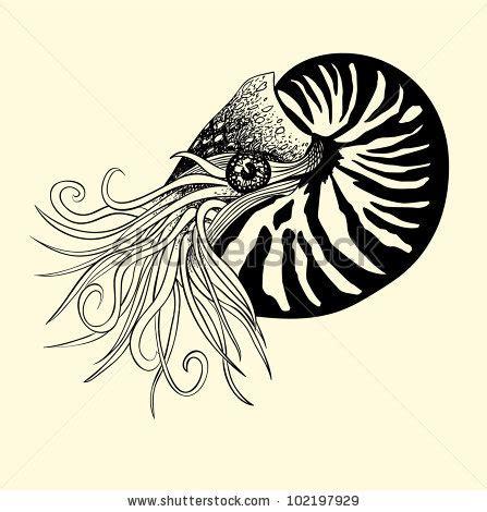 tattoo pen vector pen ink illustration nautilus stock vector 102197929