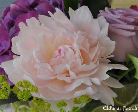 fiori di stagione agosto fiori di stagione primavera inizio estate paperblog