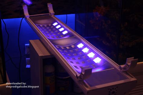 Gotek S New Led Lighting Fixture From China News Reef New Led Lights