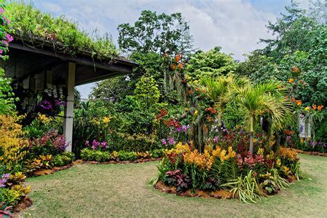 Singapore Botanic Gardens Singapore Through My Eyes Botanical Garden Singapore