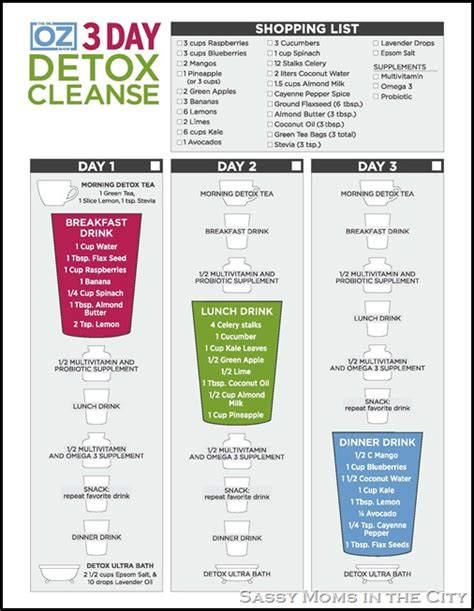 5 Day Cleanse Diet Detox by 30 Day Shred Results