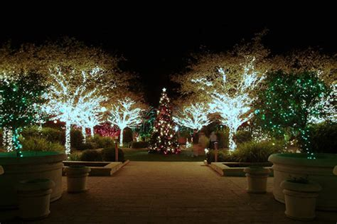 winter garden lights gardens of lights garden club