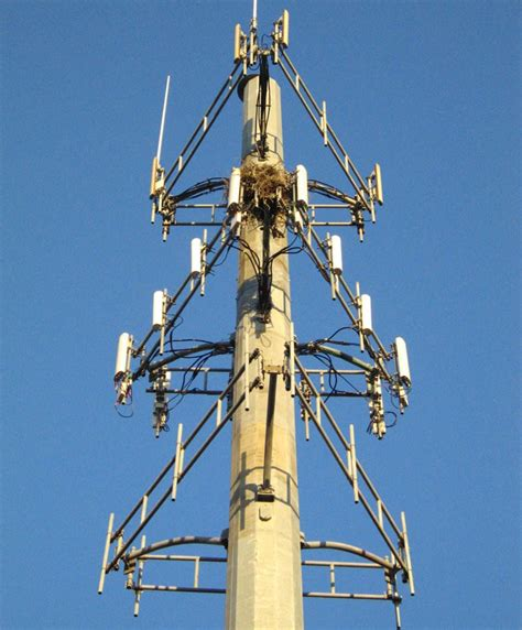 hotel cell site lease hotel cell tower lease