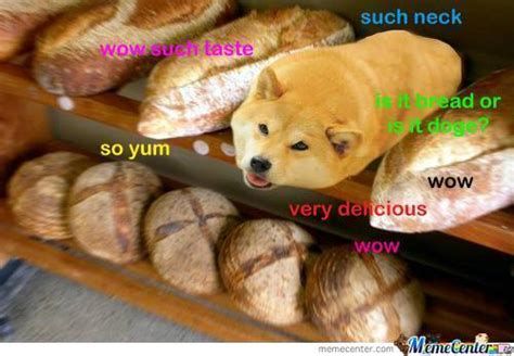 bread puppies bread 2 by darraghthebeast meme center