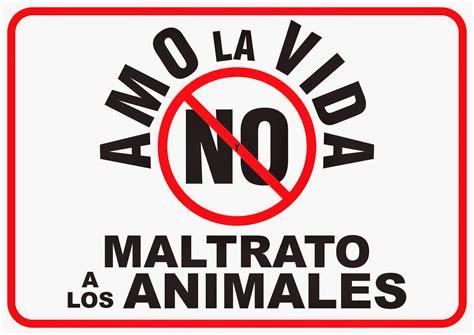 no maltrato animal 187 actividades de sensibilizaci 243 n contra el maltrato y a