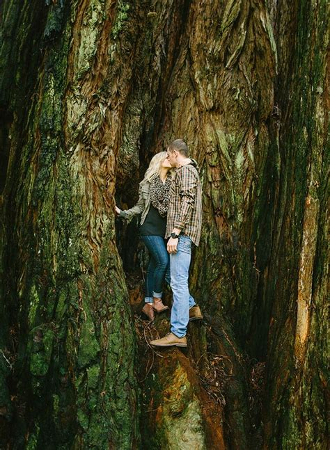 redwood forest engagement pictures engagement pictures
