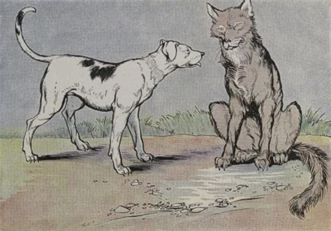 short dog in the house the wolf and the house dog by aesop