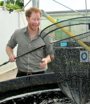 where does prince harry live prince harry visits indoor fishery angler s mail