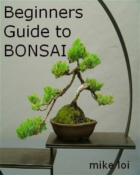 bonsai for beginners 21 best images about home flowers on madagascar flower and lily of the valley