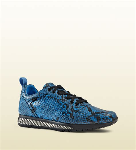 gucci python low top sneaker in blue for lyst