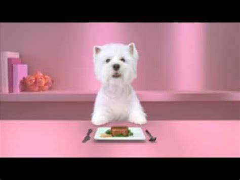 industrial puppy commercial