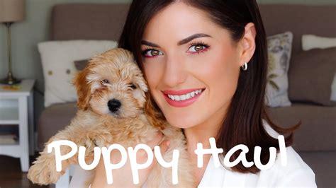 puppy haul meet teddy puppy haul gourdon puppies