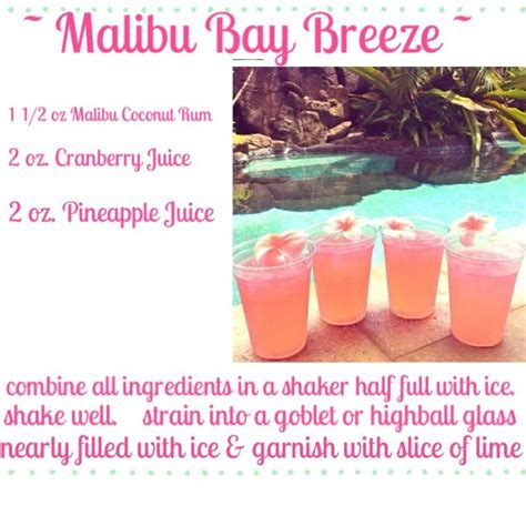malibu baybreeze the world s catalog of ideas