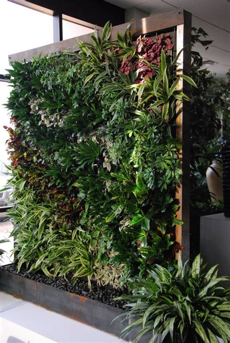 verticle gardening 25 best ideas about vertical gardens on pinterest wall