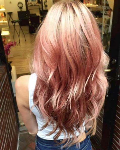 which hair color from sallys rose gold blog agadir international