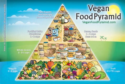 power plates 100 nutritionally balanced one dish vegan meals books vegan food pyramid do we really need it vegan coach