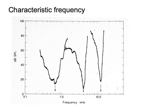 across fiber pattern theory definition a characteristic frequency