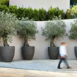 39 best images about modern outdoor planters on