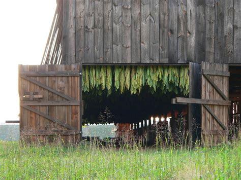 Tobacco Shed Ct by Broad Brook Ct Tobacco Barn Plantation Road Broad