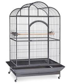 Interior Design Write For Us silverado extra large macaw parrot cage by birdscomfort com