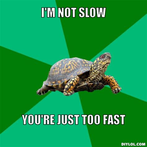 Turtle Meme - slow memes image memes at relatably com