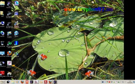 wallpaper daun berguguran bergerak lotus pond animated wallpaper screen saver animasi