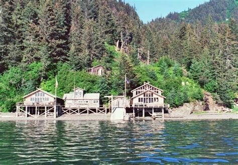 Kachemak Bay State Park Cabins by Alaska S Cove Wilderness Lodge Where The Mountains