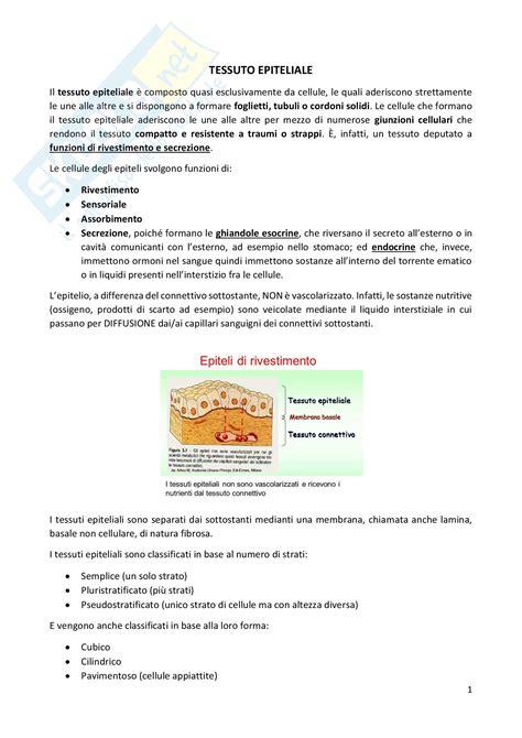 test d ingresso veterinaria teoria di biologia per i test di ammissione di medicina