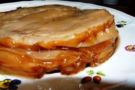 What Does A Healthy Kombucha SCOBY Look Like? | Kombucha Home Healthy Kombucha Scoby