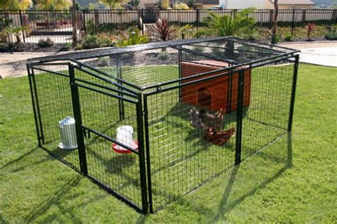 rugged ranch chicken coop rugged ranch products metal chicken coop 7 by 8 animals pet supplies pet supplies