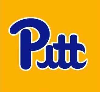 pitt colors pittsburgh panthers advanced mascotology