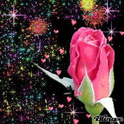 imagenes de rosas q brillan rosa en carnavales de brillos fotograf 237 a 105924807