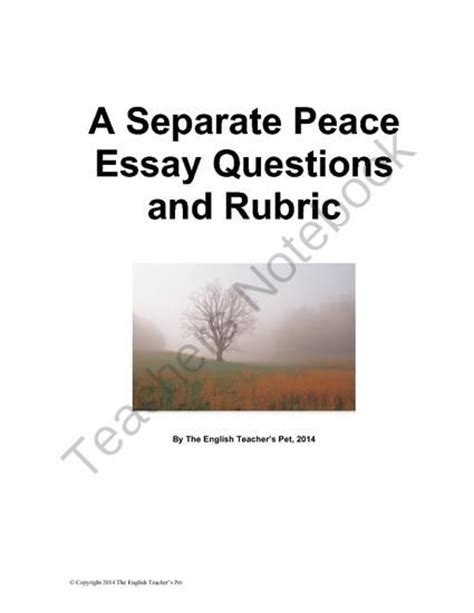 A Separate Peace Essay by A Separate Peace Essay Questions And Rubric From The