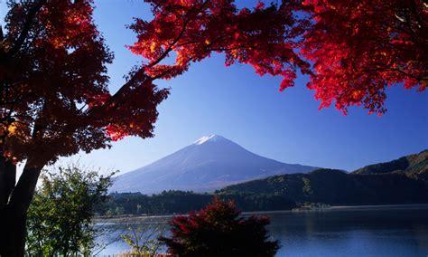 Japan Landscape Customize Your Journey On A Japan Tour Backyard