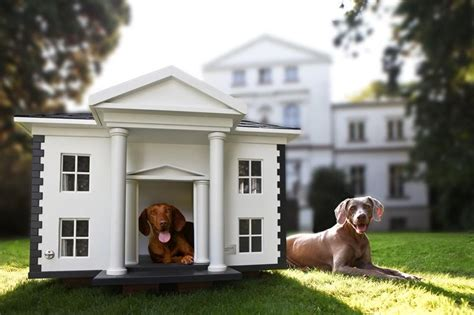 High End Dog House Photos