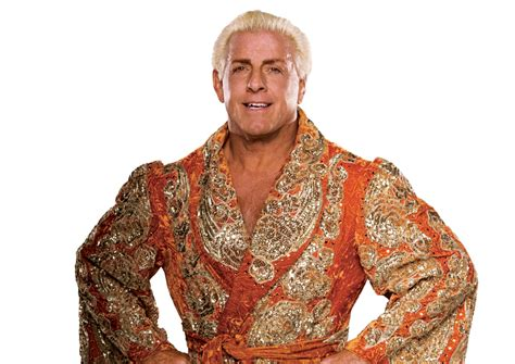 ric flair ric flair online world of wrestling