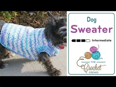 pattern for dog coat with legs how to crochet dog sweater youtube
