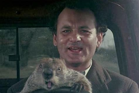 groundhog day how reviews groundhog day