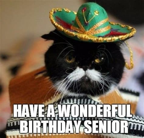 mexican birthday meme mexican birthday memes wishesgreeting
