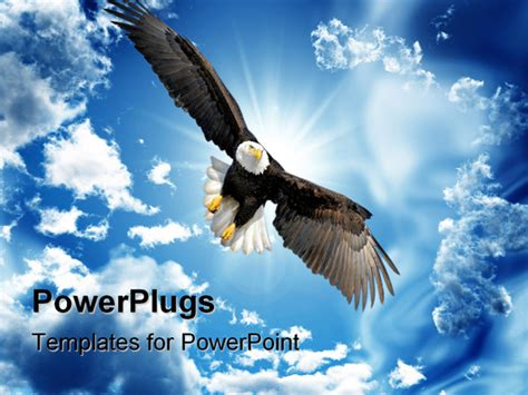 eagle powerpoint moving pictures to pin on pinterest