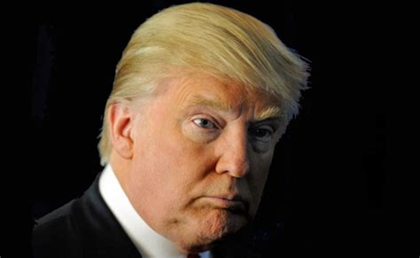 donald trump haircut donald trump celebrity hair changes really