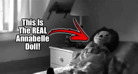 annabelle doll legend 70 best history spontaneous human combustion images on