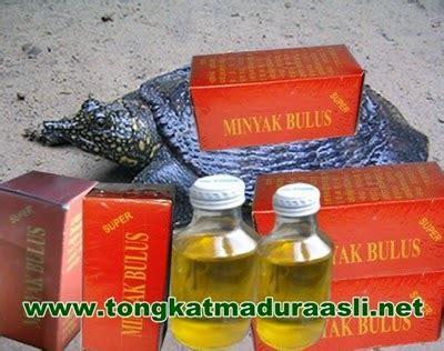 Jual Minyak Bulus Asli Semarang jual minyak bulus asli