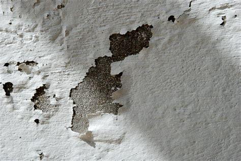 productos para la humedad en paredes interiores consejos problemas de humedad en las paredes