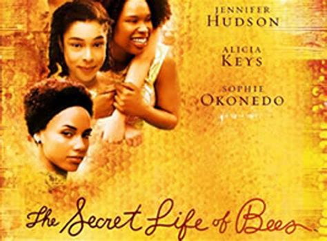theme quotes from the secret life of bees the secret life of bees essay