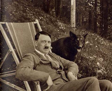hitler detailed biography andrew hamilton quot what is the best hitler biography