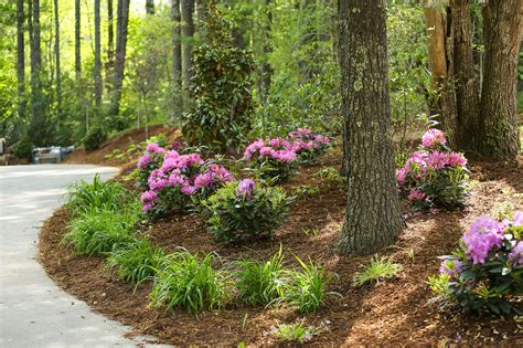 southcliff asheville gated mountain community fairview nc portfolio archive gardens for living