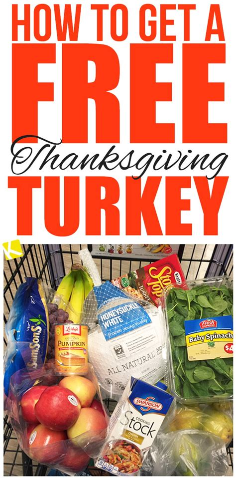Publix Flu Shot 10 Gift Card - how to get a free thanksgiving turkey the krazy coupon lady
